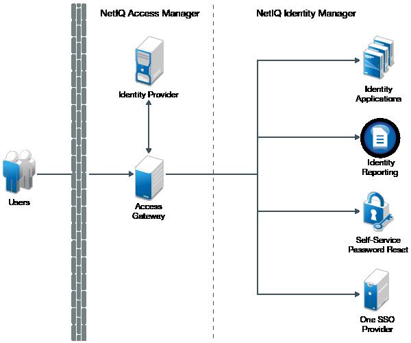 Reverse Proxy Based Single Sign-On - NetIQ Identity Manager